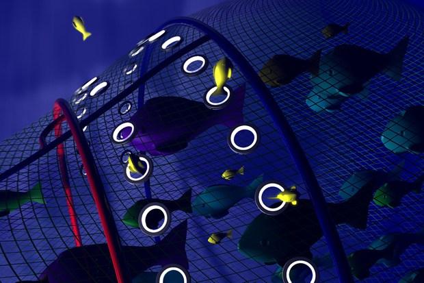 LED漁網