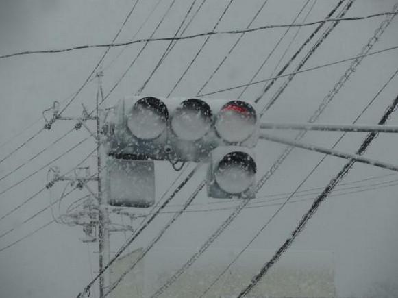 附著雪花的 LED 交通號誌燈