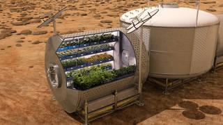 NASA計畫在未來的載人火星任務中栽植菜葉與香料等農作物。(圖片來源:NASA)