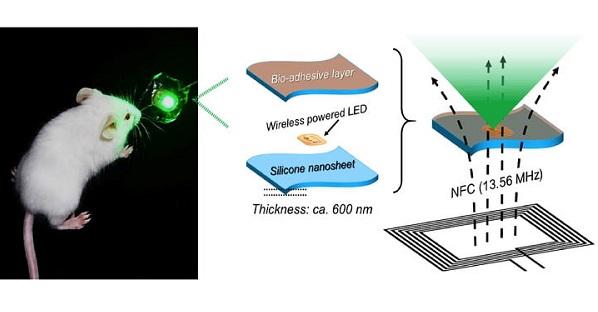 植入式LED裝置治療癌症